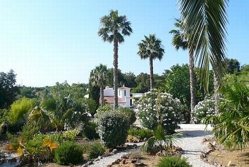 Der Garten im Norden von Vila Maria.