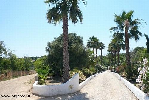 Die Zufahrt zum Vila Maria.